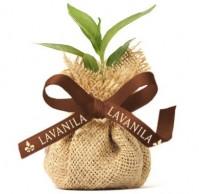 Buy LAVANILLA, Plant a Tree!