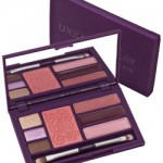 Urban Decay Face Case:  $14 to Fabulous!